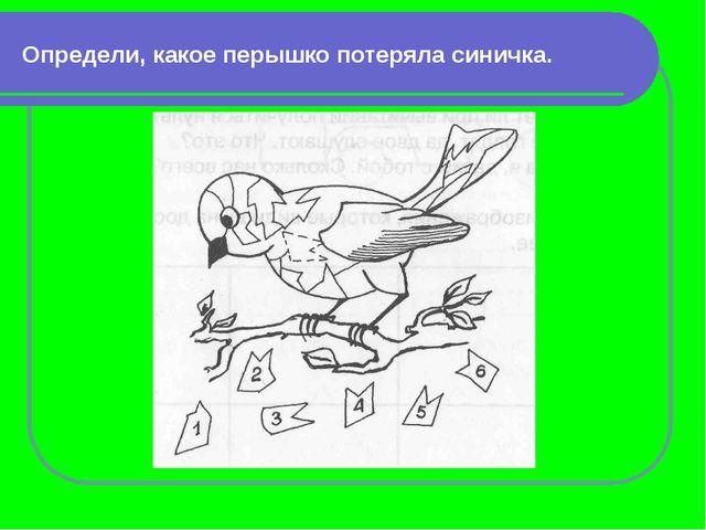 Узнай фигуру Кружок двигается и рисует треугольник.