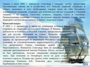 Однако в июле 1802 г. император Александр I утвердил проект, предоставив Круз
