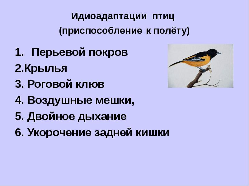 http://mypresentation.ru/documents/1e466165f610532538b87eb619b7e07c/img8.jpg