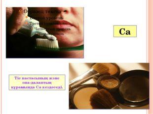 Ca Көкөністердің құрамына Ca кіреді. Құрамында кальцийі бар тағамдар.