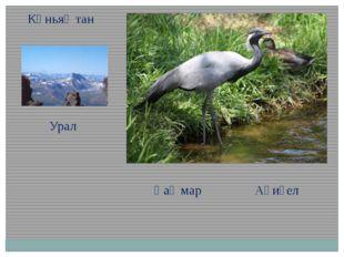 Көньяҡтан Урал Һаҡмар Ағиҙел