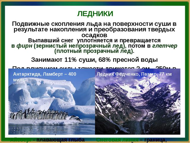 ЛЕДНИКИ Антарктида, Ламберт – 400 миль Ледник Федченко, Памир, 77 км Подвижны...