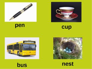 pen cup bus nest