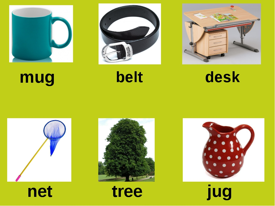 mug desk belt jug net tree