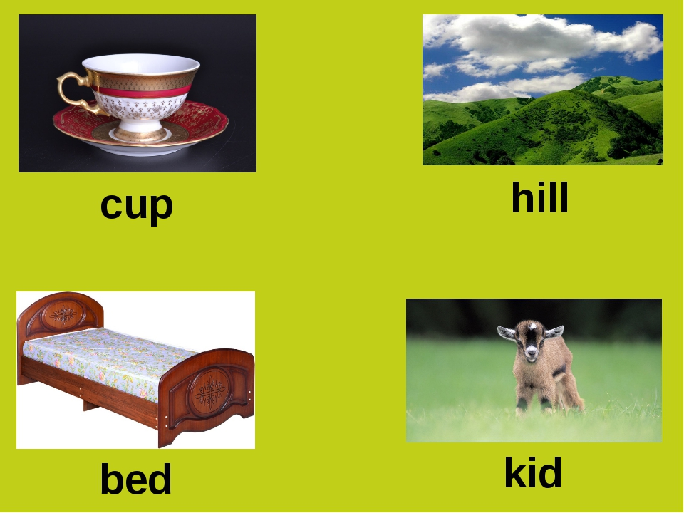 cup hill bed kid