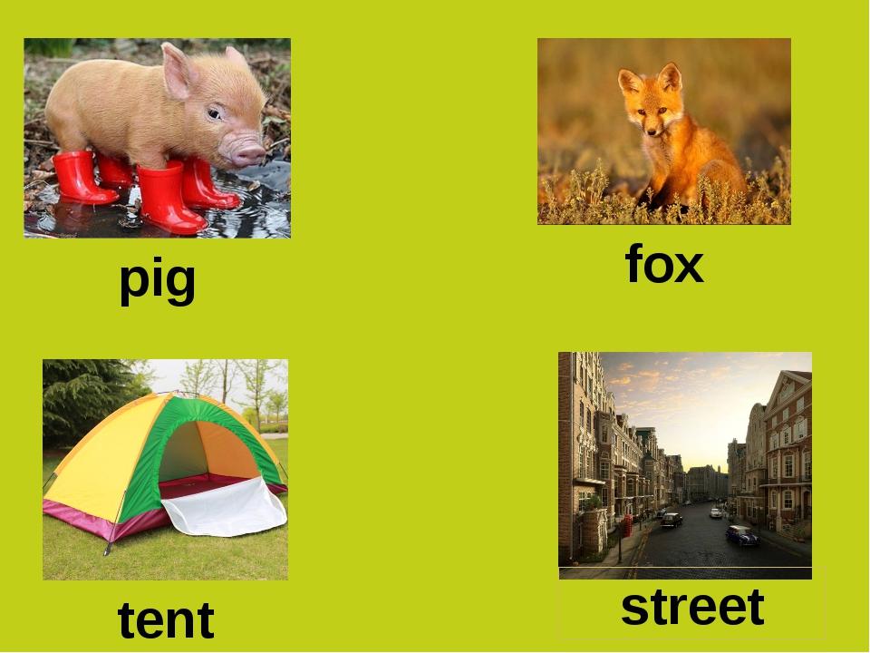 pig fox tent street