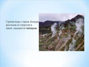 Горячая вода с паром, бьющая фонтаном из отверстия в земле, называется гейзер