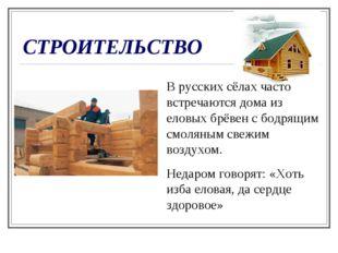 СТРОИТЕЛЬСТВО В русских сёлах часто встречаются дома из еловых брёвен с бодря