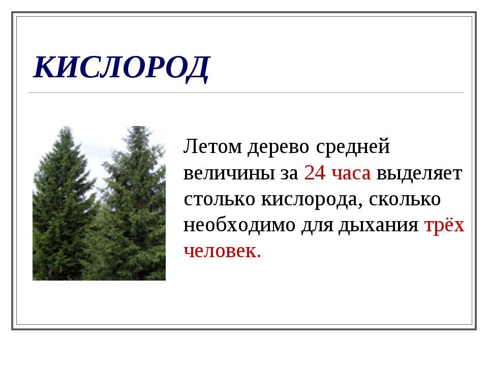 КИСЛОРОД Летом дерево средней величины за 24 часа выделяет столько кислорода,...