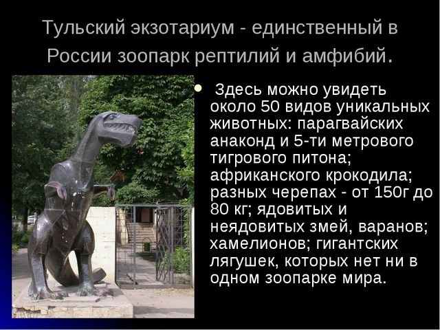 Тульский экзотариум - единственный в России зоопарк рептилий и амфибий. Здес...