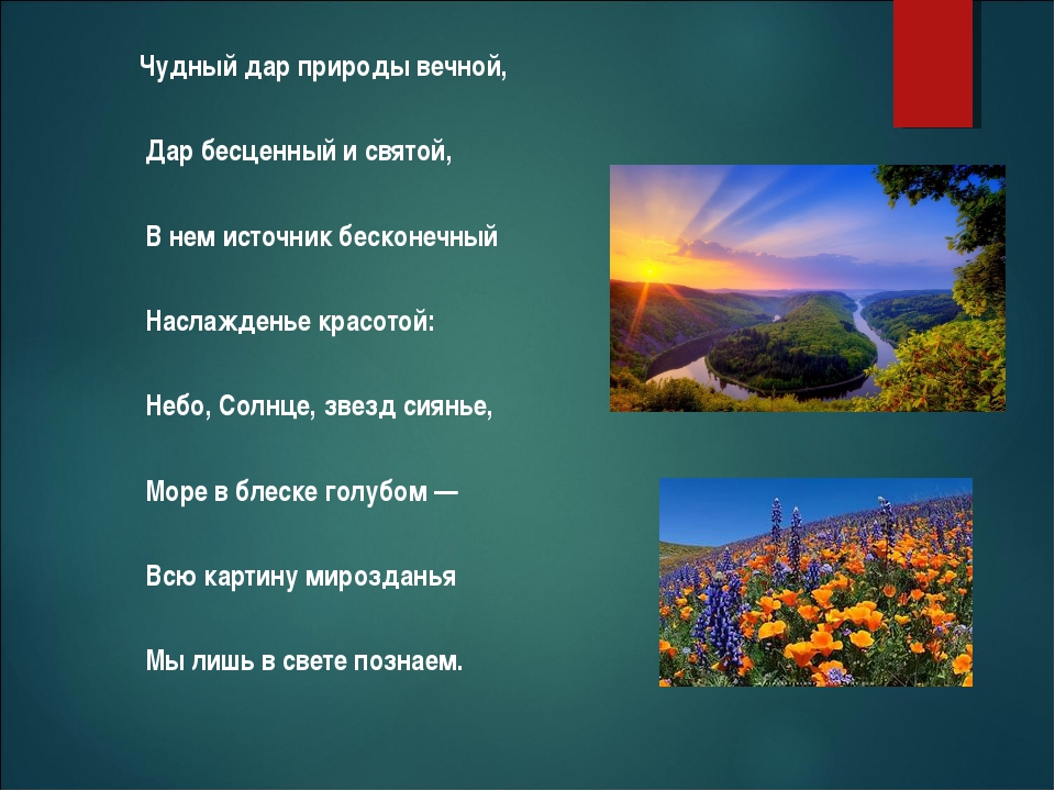 Чудный дар природы вечной, Дар бесценный исвятой, Внем источник бесконечны...