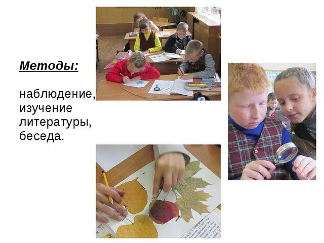 Методы: наблюдение, изучение литературы, беседа.
