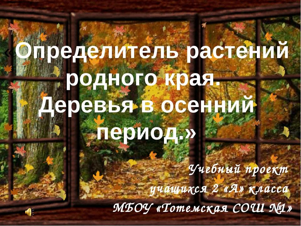 «Определитель растений родного края. Деревья в осенний период.» Учебный проек...