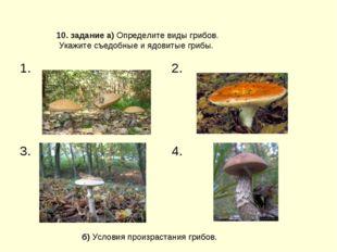 б) Условия произрастания грибов. 10. задание а) Определите виды грибов. Укажи