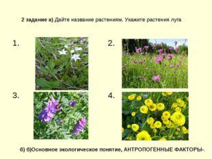2 задание а) Дайте название растениям. Укажите растения луга б) б)Основное эк