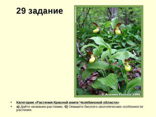 29 задание Категория «Растения Красной книги Челябинской области» а) Дайте на