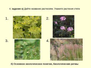 4. задание а) Дайте название растениям. Укажите растения степи б) Основное эк