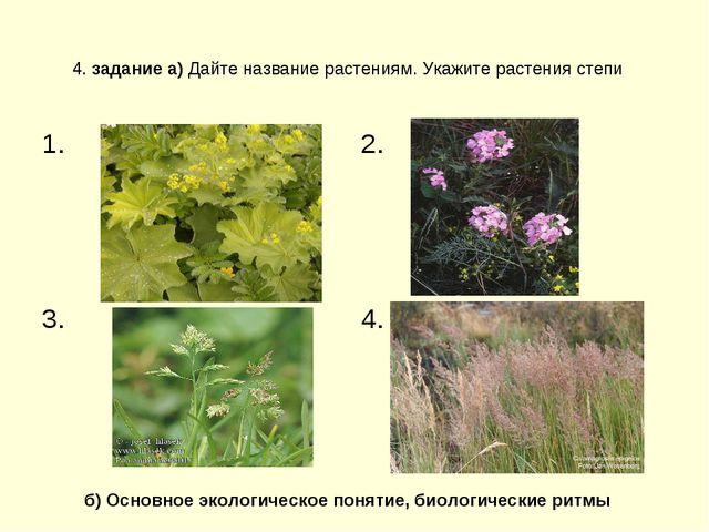 4. задание а) Дайте название растениям. Укажите растения степи б) Основное эк...