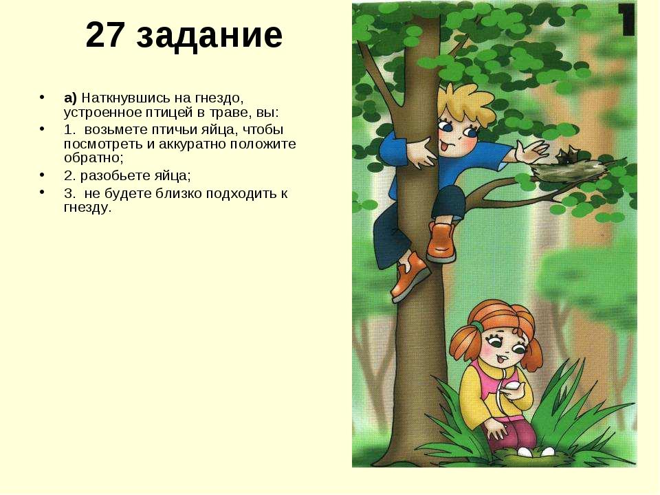27 задание а) Наткнувшись на гнездо, устроенное птицей в траве, вы: 1. возьме...