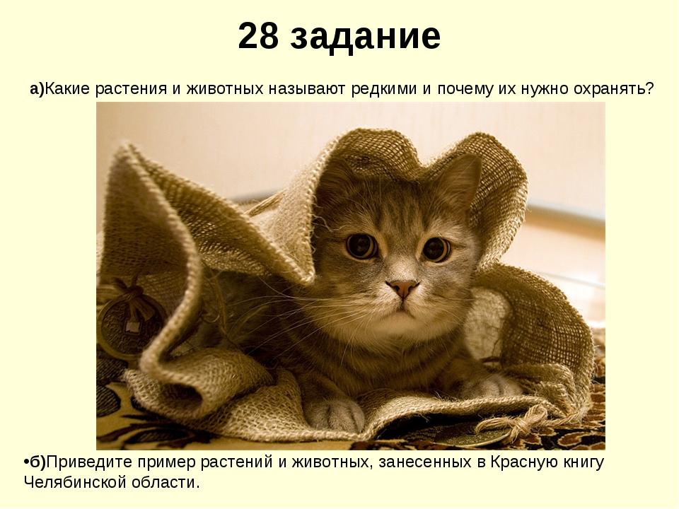 28 задание а)Какие растения и животных называют редкими и почему их нужно охр...