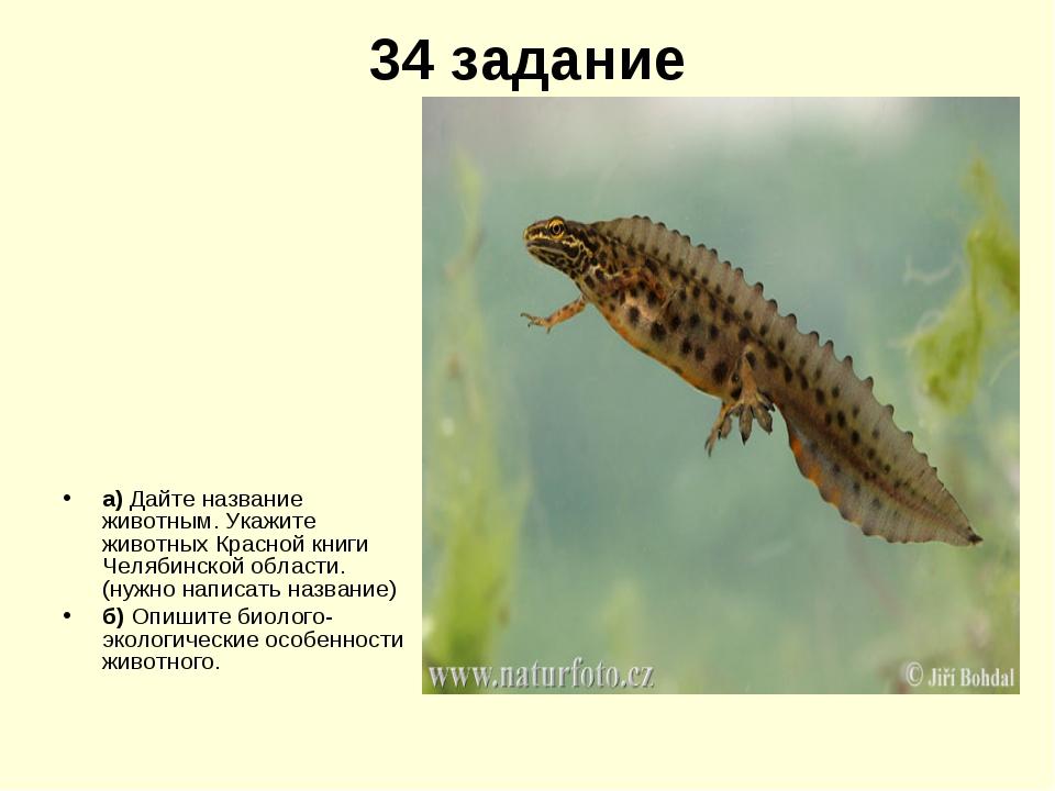 34 задание а) Дайте название животным. Укажите животных Красной книги Челябин...