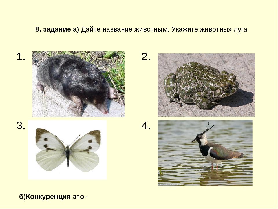 8. задание а) Дайте название животным. Укажите животных луга б)Конкуренция эт...