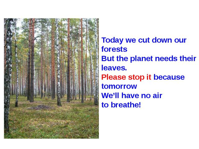 Today we cut down our forests But the planet needs their leaves. Please stop...