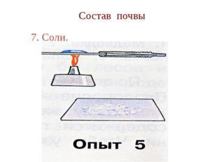 Состав почвы 7. Соли.