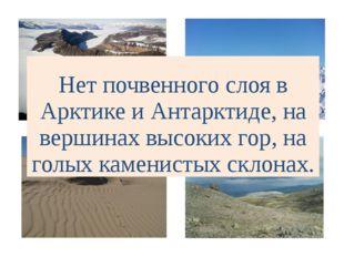 Нет почвенного слоя в Арктике и Антарктиде, на вершинах высоких гор, на голых