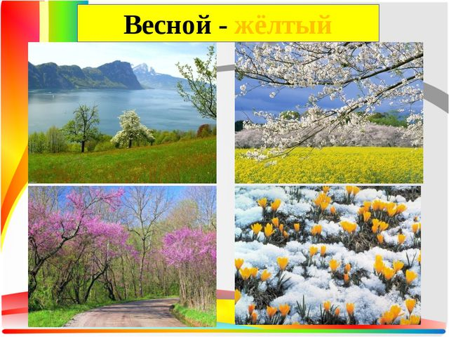 Весной - жёлтый