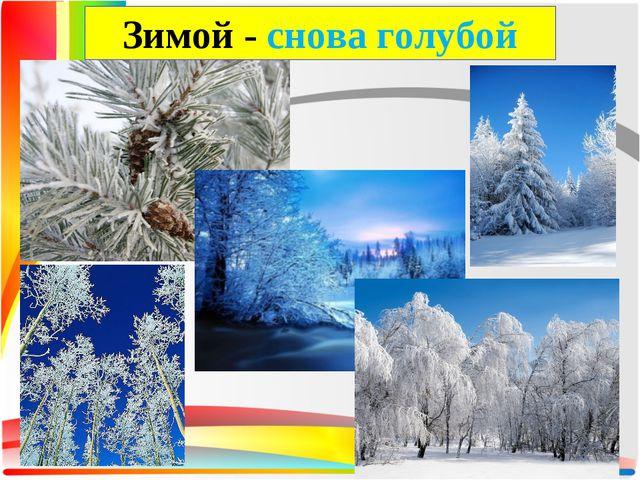 Зимой - снова голубой