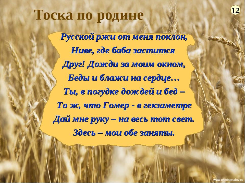 Тоска по родине 12 Русской ржи от меня поклон, Ниве, где баба застится Друг!...