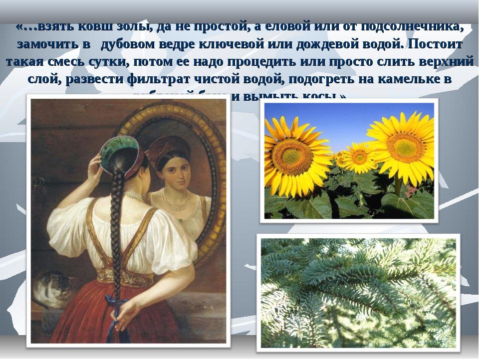«…взять ковш золы, да не простой, а еловой или от подсолнечника, замочить в д...
