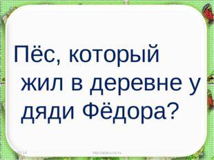 Пёс, который жил в деревне у дяди Фёдора? * http://aida.ucoz.ru * http://aida