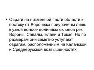 Овраги на низменной части области к востоку от Воронежа приурочены лишь к узк