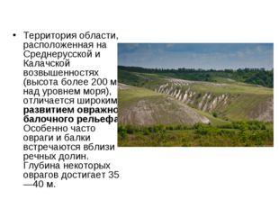Территория области, расположенная на Среднерусской и Калачской возвышенностях