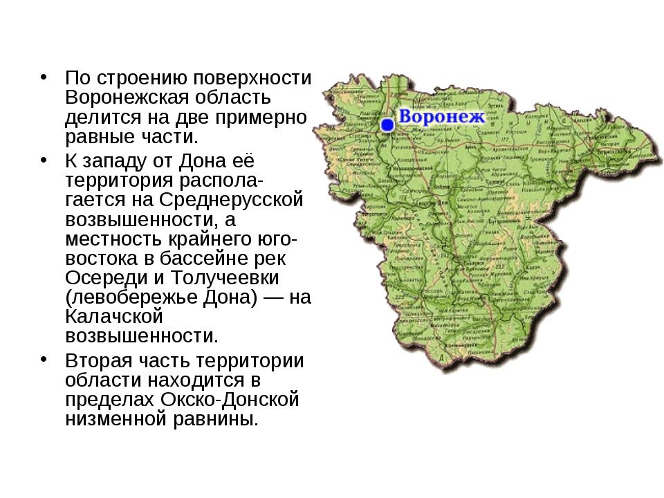 По строению поверхности Воронежская область делится на две примерно равные ча...
