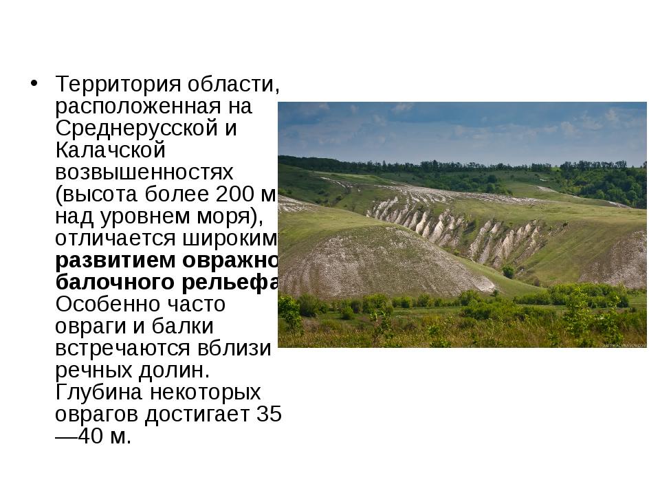 Территория области, расположенная на Среднерусской и Калачской возвышенностях...
