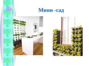 Мини -сад