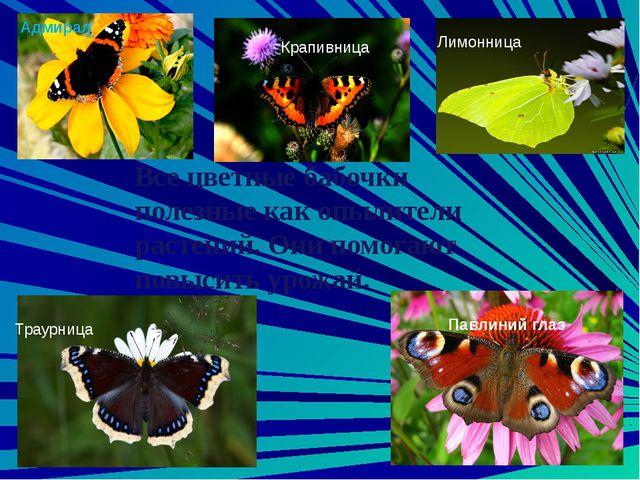 Среди насекомых есть много видов, которые не приносят особого вреда и в то же...