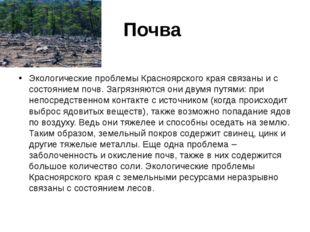 Почва Экологические проблемы Красноярского края связаны и с состоянием почв.