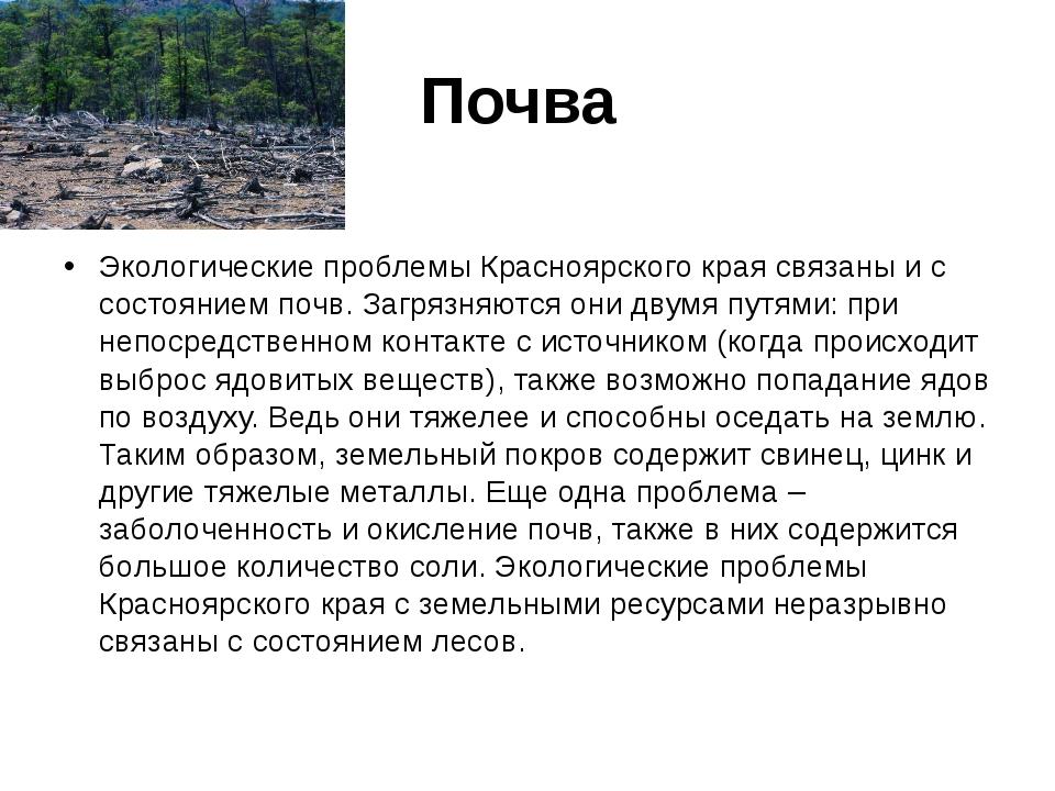 Почва Экологические проблемы Красноярского края связаны и с состоянием почв....