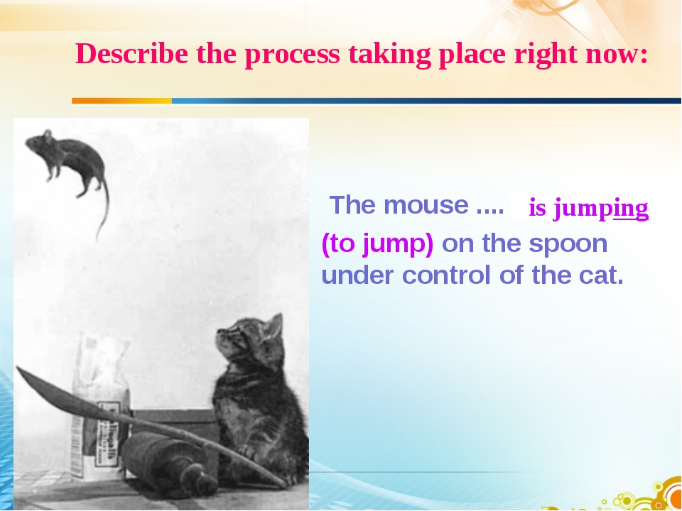 Describe the process taking place right now: The mouse .... (to jump) on the...