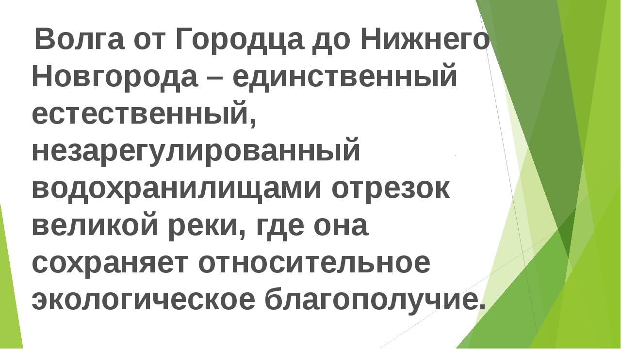 Волга от Городца до Нижнего Новгорода – единственный естественный, незарегул...