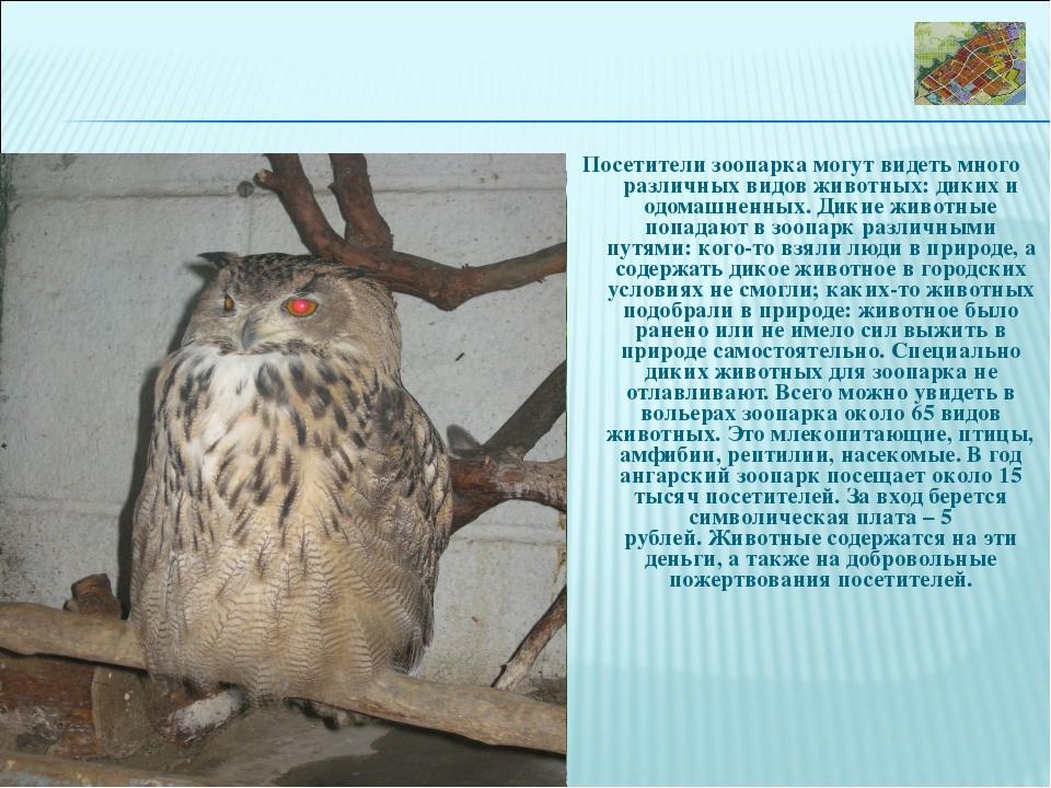 Посетители зоопарка могут видеть много различных видов животных: диких и одом...