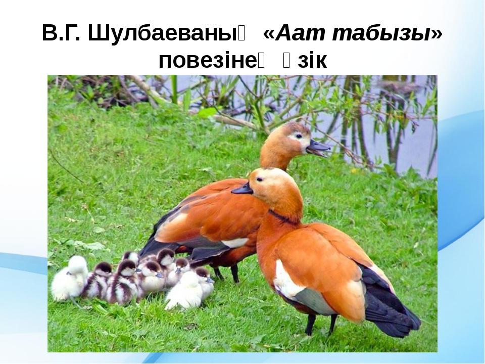 В.Г. Шулбаеваның «Аат табызы» повезінең ӱзік