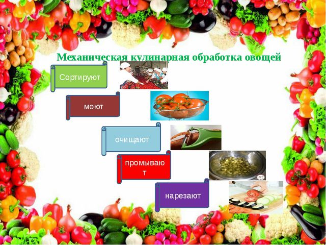 Механическая кулинарная обработка овощей Сортируют промывают очищают моют нар...