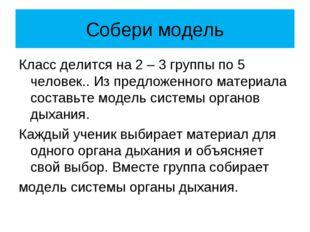 Собери модель Класс делится на 2 – 3 группы по 5 человек.. Из предложенного м