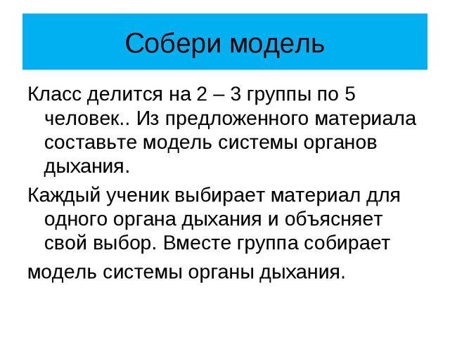 Собери модель Класс делится на 2 – 3 группы по 5 человек.. Из предложенного м...