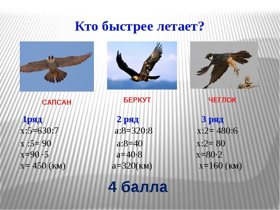 Кто быстрее летает? САПСАН ЧЕГЛОК БЕРКУТ 1ряд 2 ряд 3 ряд х:5=630:7 а:8=320:8...